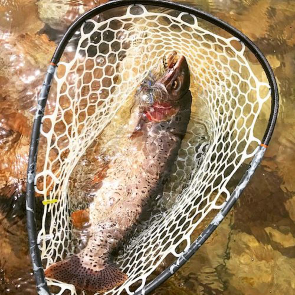 Fingerbling Netted Trout